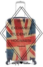 Exchange Student at Hogwarts by heatherlikestotravel
