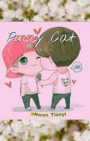 Puccy Cat