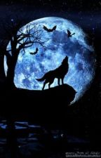Wolf of Artemis (Percy Jackson fanfic) by Nightmares26