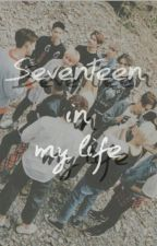 Seventeen in my life by Im_into_you