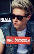 Fall in love in the first met (Niall Horan fanfiction bahasa indonesia) by nayelhoran_93
