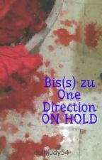 Bis(s) zu One Direction ON HOLD by MrsLiveYourLife