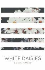 White Daisies by melliflouss