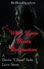 When Love Met Destruction (Devin 'Ghost' Sola Love Story) by BloodSapphire
