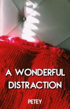 a wonderful distraction - ryden by -forlife