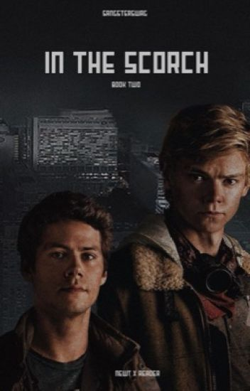 [COMPLETED] In The Scorch ➸Newt x Reader