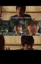 Percy Jackson/Harry Potter by DefinitelyWeird