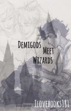 Demigods meet Wizards by ilovebooks181