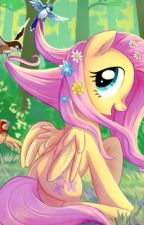 FlutterCord by horseandponystable1