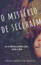 O Mistério de Seclhaim by thais__araujo