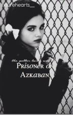 The Potter Twins and the Prisoner of Askaban {3} by fxturehearts__