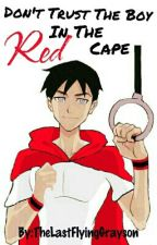 Don't Trust The Boy In The Red Cape (Young Justice) by TheLastFlyingGrayson