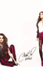 Cher's Twin (Cher Lloyd and One Direction Fanfic) by FashionGirl29