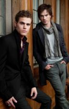 A Vampire Diaries Fanfiction: Life with the Salvatores by SecretWriter_x
