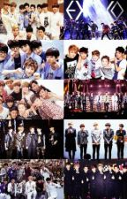 ONE YEAR WITH EXO by abnormALLIEcool