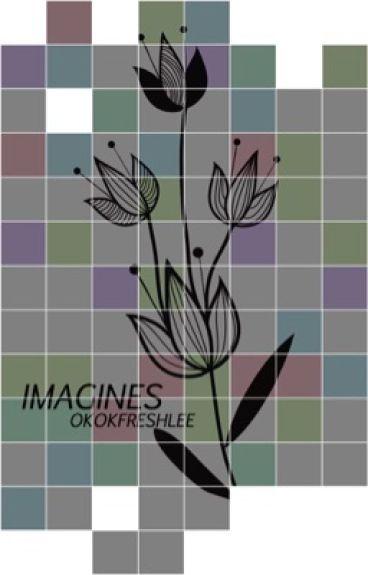 Imagines - OGOC/Freshlee [✓]