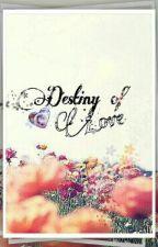 Destiny of Love by PuteriAnanda