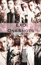 EXO smut OneShots by ChoiSoRi