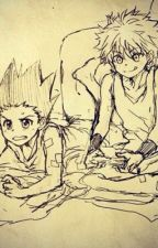The Assassin Doesn't Remember (Gon x Killua x Reader) {Sequel} COMPLETE by Essencede