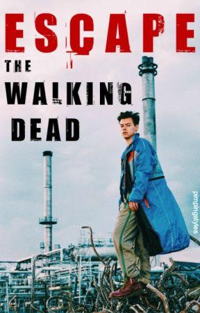 Escape the Walking Dead // h.s. by pimpingstyles