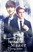 TROUBLEMAKER (HUN-HAN) by Jenny_queen