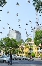 Sài Gòn và những ngày không tên by JasmineNVT