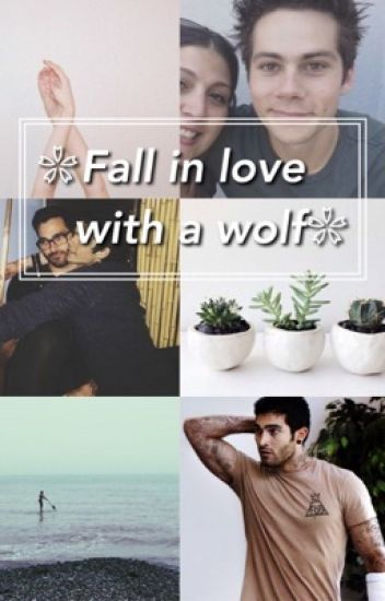 ❁fall in love with a wolf❁