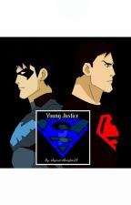 Duplicate (Young Justice Fanfic) by skyeworthington14
