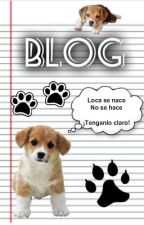 BLOG by Stephany2004