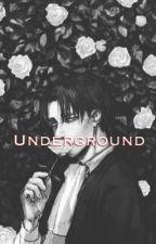 Underground Thug Love ( Levi x Neko Reader ) by Aerla235