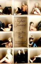 Fashion Junior. (Super Junior's Fanfic) by thepath20