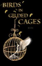 Birds in Gilded Cages(larry)(persian) by niallssm