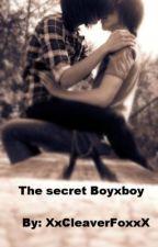 The Secret (BoyxBoy) by XxCleverFoxxX