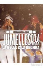 LA BELLE & LA BEGHRA. (EN PAUSE) by cheekychronique