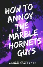 HOW TO ANNOY THE MARBLE HORNETS GUYS by JohnLaurensTurtle