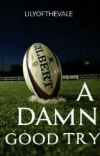 A damn good try. Owen Farrell fanfic by Lilyofthevale