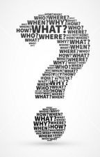 What is a question? by Ablazeofwork