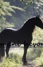 Elämäni hevonen. by CreepyGirlxo