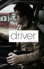 Driver (h.s.) by lara_polarka