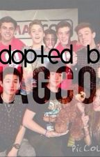 Adopted By MAGCon by maybecece