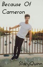 Because of Cameron by StacyQuinn