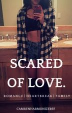 Scared of Love || Lauren/You by camrenharmonizer97