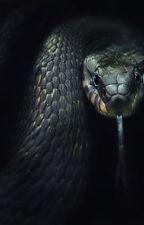 Snake in the Dark Boyxboy by darry1858