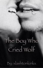 The Boy Who Cried Wolf    Lashton by xlashtonkinkx