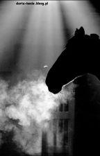 Koń Cień i historia pewnej dziewczyny[Zakończone] by DakotaArt