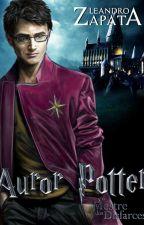 Auror Potter e o Mestre dos Disfarces by LeandroZapata