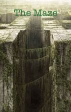 The maze by notsureofausername