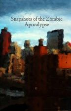 Snapshots of the Zombie Apocalypse by Carridactyl