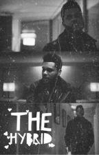 The Hybrid - Liam Dunbar | ✓ by gigiigeorgina