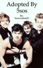 Adopted by 5sos by Teenwolfmk55